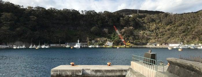 Habu Port is one of Posti che sono piaciuti a 高井.