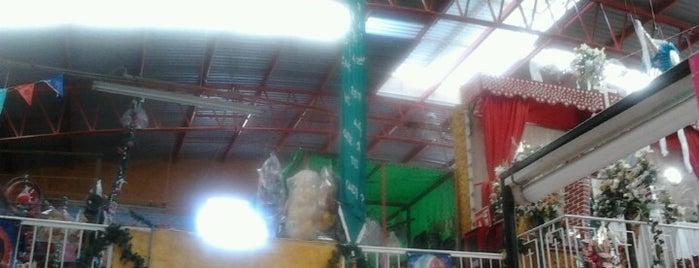 Mercado Municipal is one of Locais salvos de Yarir.