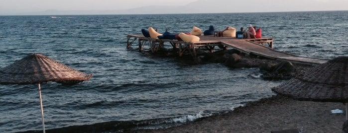 Balikci İzzetin Yeri is one of Biga Yarımadası.