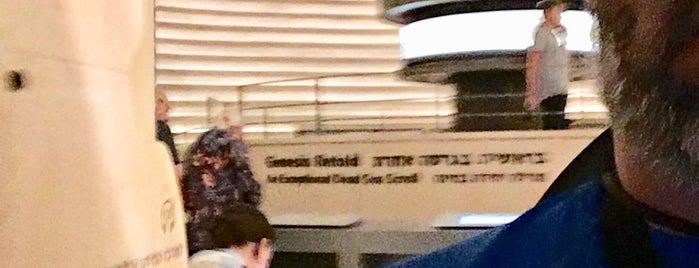 The Israel Museum is one of Adam 님이 좋아한 장소.