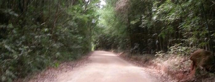 Pedra Grande is one of Posti che sono piaciuti a Inaiara.