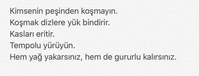 Cihan Doğa Evleri is one of Locais curtidos por 👑 PeRvİnn👑.