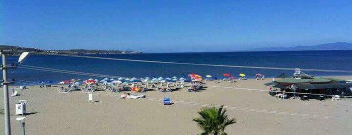 Deniz Cafe & Beach is one of สถานที่ที่ Haluk ถูกใจ.