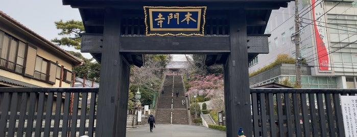 池上本門寺 総門 is one of Posti che sono piaciuti a Nonono.