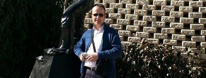 MTA Şehit Mehmet Alan Enerji Parkı is one of Ankara.