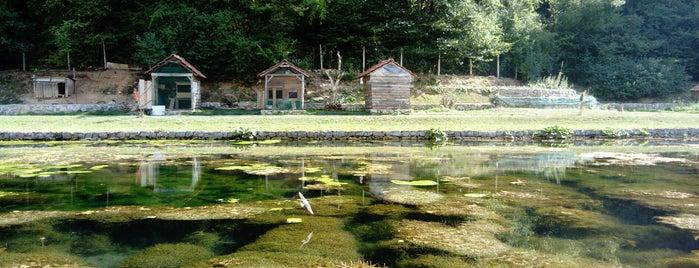Ribnik Rajska dolina is one of Balkan Gezisi.