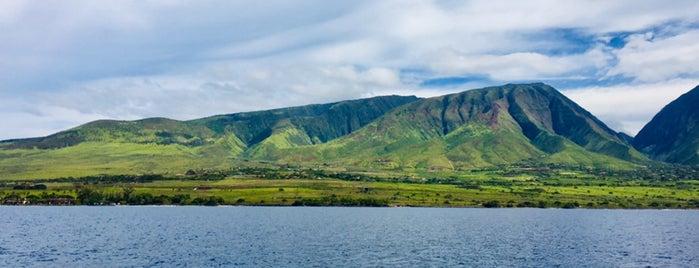 Atlantis Submarines Maui is one of Orte, die Nilay gefallen.