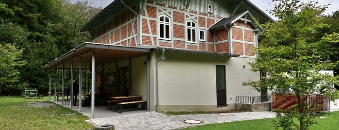 """UNESCO Welterbeforum """"Michael Otto Haus"""" (Waldhalle) is one of Oostzeekust 🇩🇪."""