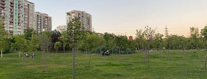 30 Ağustos Zafer Parkı is one of Çukurambar ve Civarları.