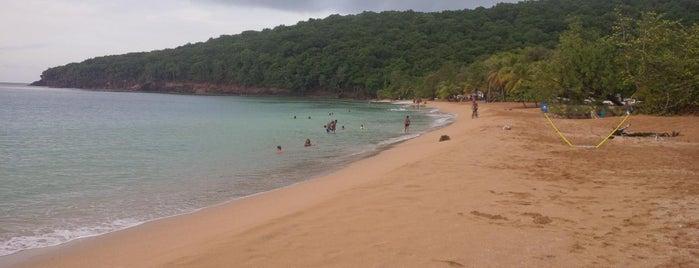 Anse de la Perle is one of Martinique & Guadeloupe.