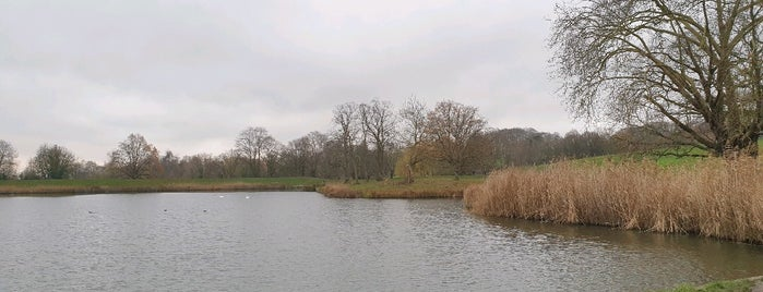 Hampstead Heath Ladies Ponds & Meadow is one of crouch end.
