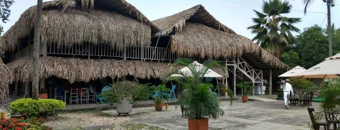La Bonga Del Sinú is one of Lugares favoritos de Jose.
