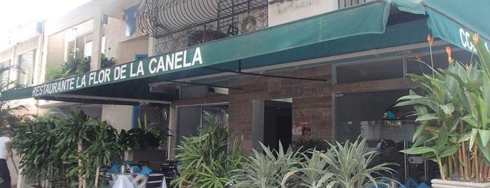 La Flor De La Canela is one of Lugares favoritos de Jose.