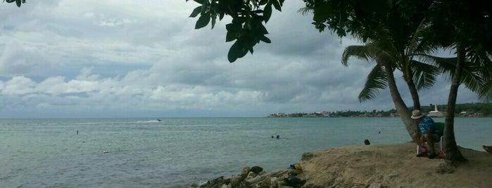 Rocky Cay is one of Lugares favoritos de Jose.