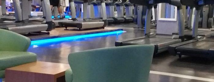 Spora Club Plates Studio is one of สถานที่ที่ Nuran ถูกใจ.
