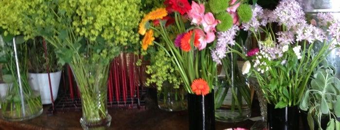 Flor Unikon is one of An Aussie's fav spots in London.