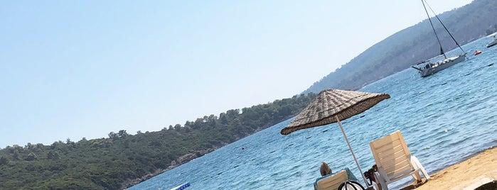 Adabükü Çamlık Beach is one of สถานที่ที่ JOY ถูกใจ.