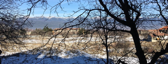 Mountain Paradise by the Walnut is one of Bansko by MK.
