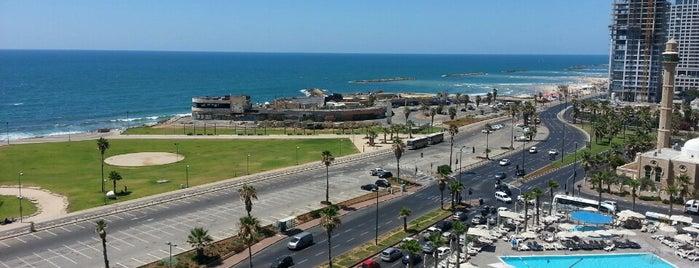Dan Panorama Tel Aviv (דן פנורמה) is one of Lugares favoritos de Mitya.