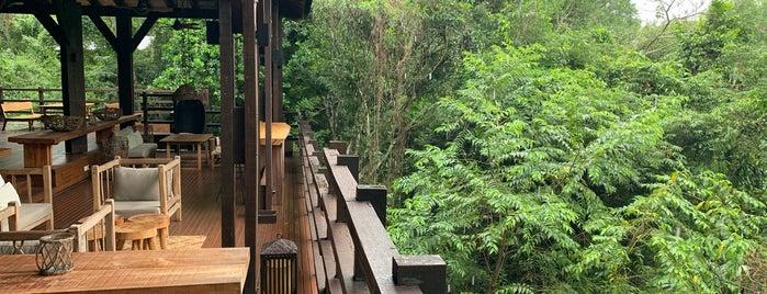 Awasi Iguazú is one of International: Hotels.