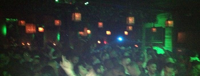 Veranda is one of Best Clubs in NYC.