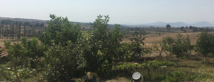 Kütahya | Aslanapa İlçesi Köyleri