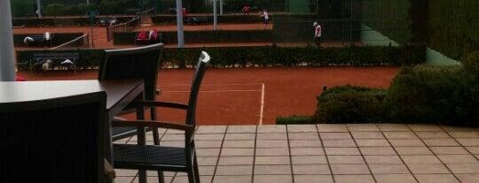 Club de Tenis de Gijón is one of Dónde dejar un rato a nuestros peques.