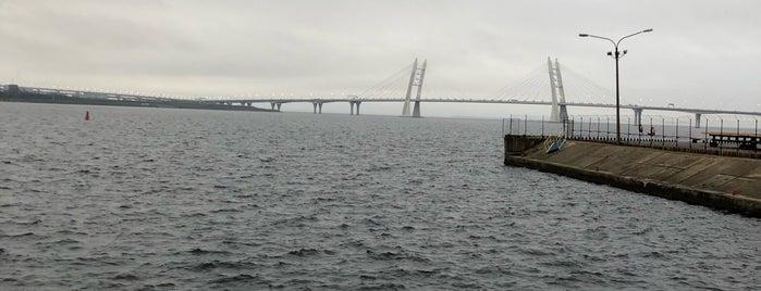 Port Sevkabel is one of Saint Petersburg.