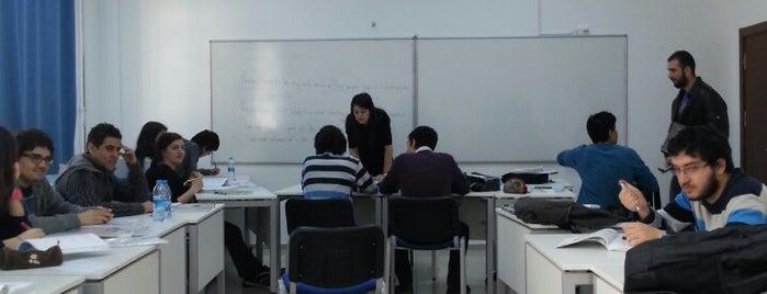 Yabancı Diller Bölümü is one of Türk Hava Kurumu Üniversitesi.