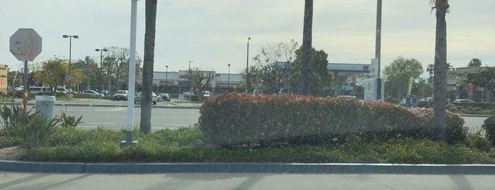 Santa Paula, California is one of Lugares que quero conhecer.