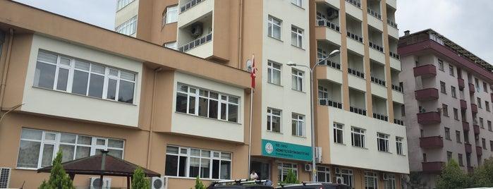 Hizmetiçi Eğitim Enstitusu Çayeli is one of Yeme-İçme (Türkiye).