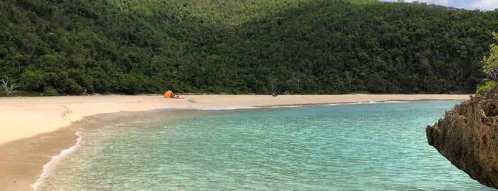 Smuggler's Cove is one of USVI/BVI.