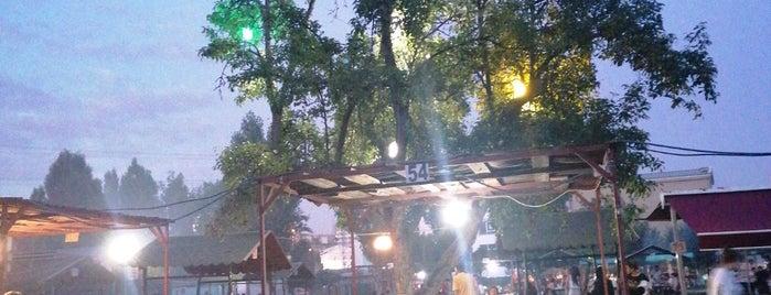 Alacaatlı Çınaraltı Piknik Alanı is one of Dene Ankara.