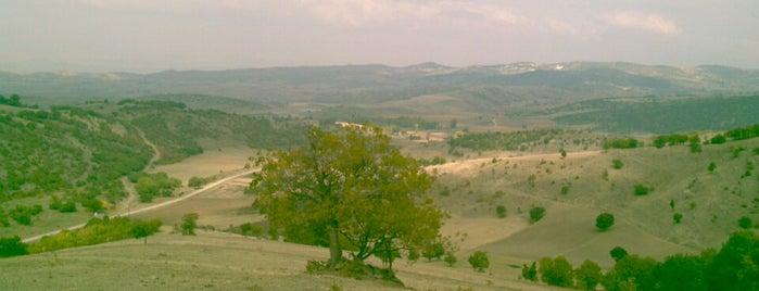 Lugares favoritos de Sedat