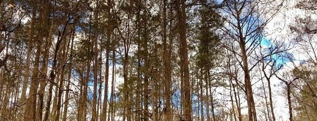 Croatan National Forest is one of National Recreation Areas.