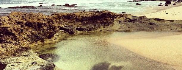 Kaena Point Mokuleia Side is one of Favorite Local Kine Hawaii.