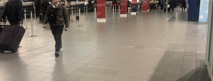TSA Pre Checkpoint is one of สถานที่ที่ Tania ถูกใจ.