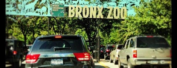 Bronx Park East Lot is one of Denis'in Kaydettiği Mekanlar.