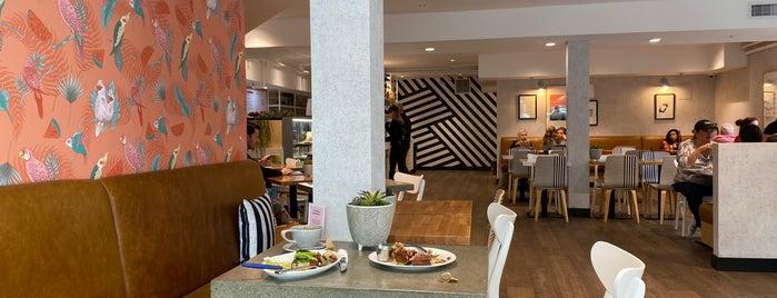 Parakeet Cafe is one of Posti che sono piaciuti a Alfa.