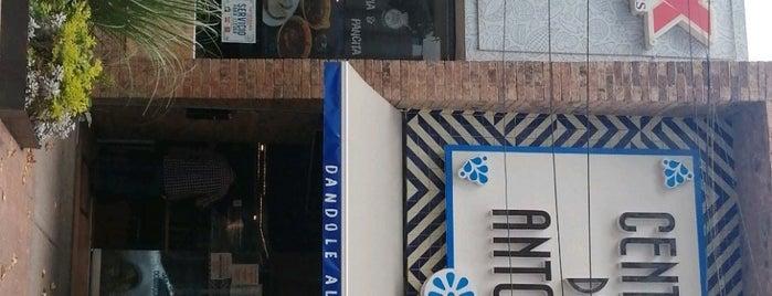 Central De Antojos is one of CDMX: Condesa/Escandón.