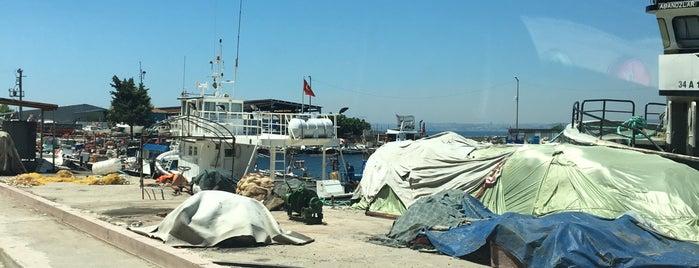 marmara balıkçılık is one of Mehmet Koray'ın Beğendiği Mekanlar.