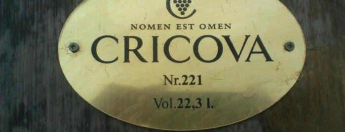 Cricova is one of Orte, die Yunus gefallen.