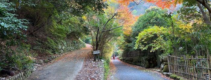 鼓ヶ滝公園 is one of Kansai Trip.