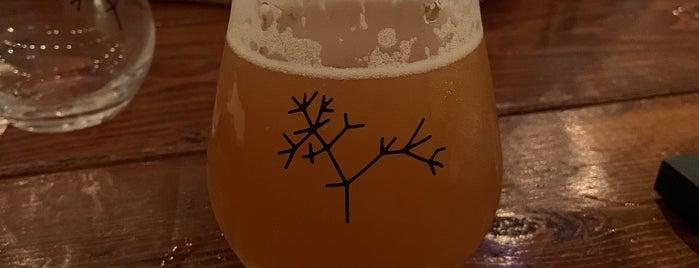 Speciation Artisan Ales is one of สถานที่ที่ Jen ถูกใจ.