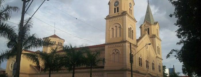 Matriz São João Batista is one of Rio claro.