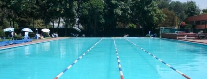 Just Swim is one of Por corregir.