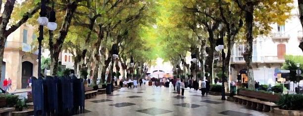 Passeig des Born is one of Palma De Mallorca.