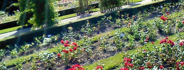 Rosengarten im Britzer Garten is one of Посетить второй раз.