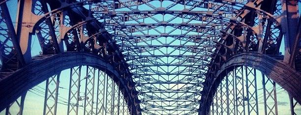Bolsheokhtinsky Bridge (Peter the Great Bridge) is one of П.