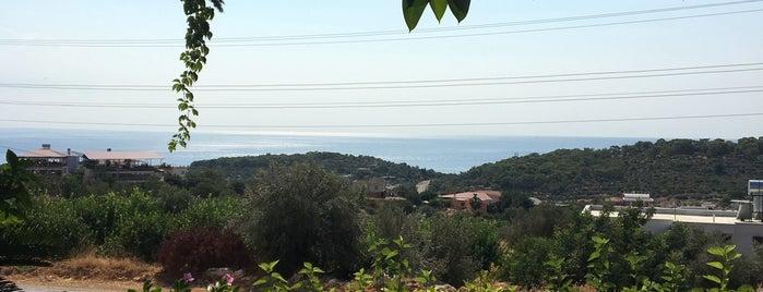 İkram Köy Kahvaltısı is one of Mersin.
